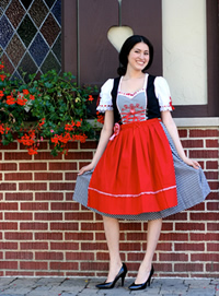 Image result for traditional german skirt